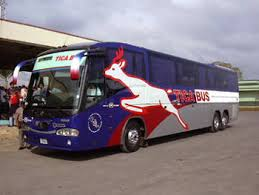 In case you are curious, this is what a Tica Bus looks like. Thank you, Internet.