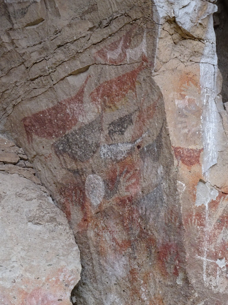 The Ancients painted guanacos on the caves too.