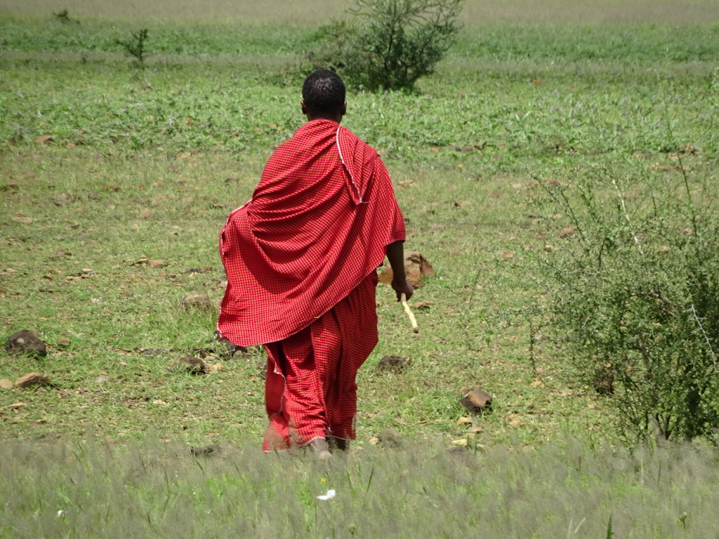 Our Maasai guide takes us on a nature walk.