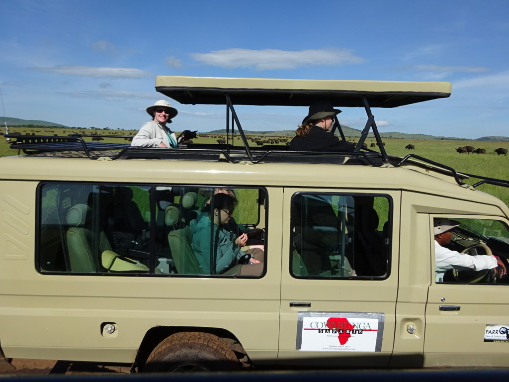 Land Cruisers are re-fitted with raisable roofs for great game-viewing!