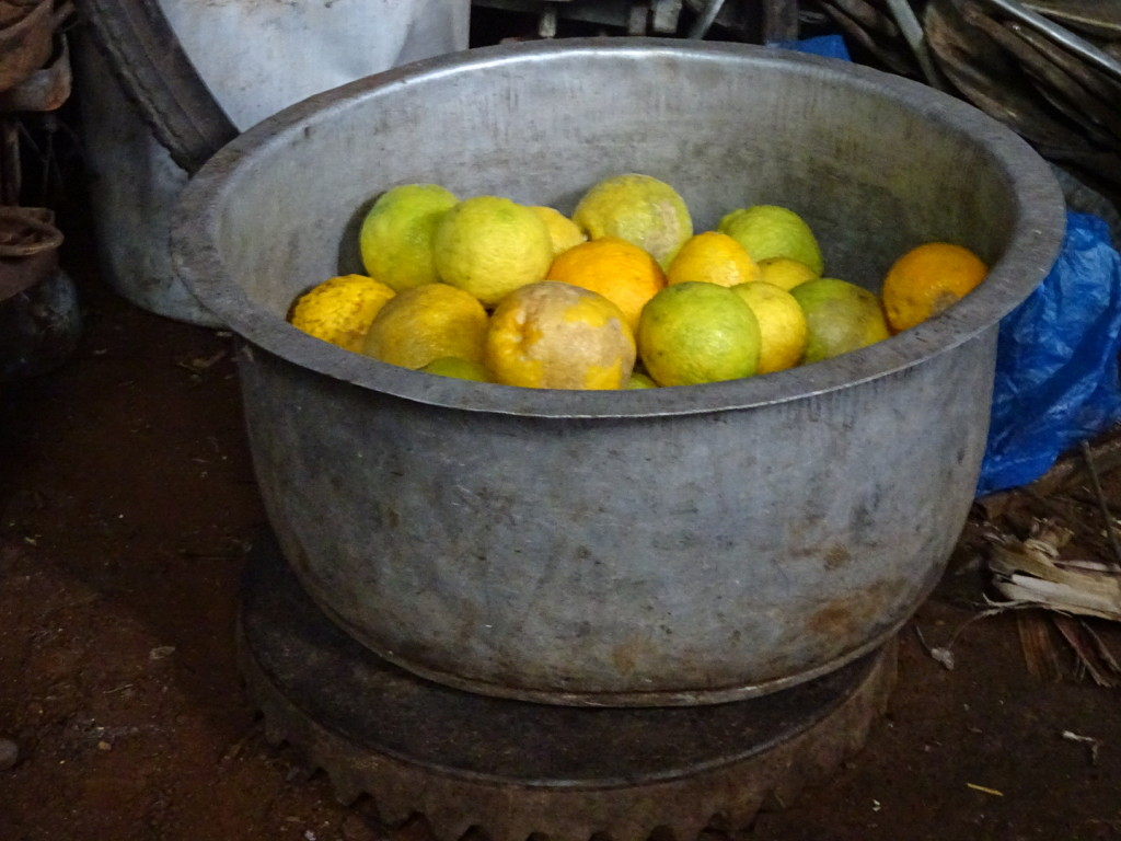 When life gives you lemons...make a homemade pot for them! (These are actually oranges, I think.)