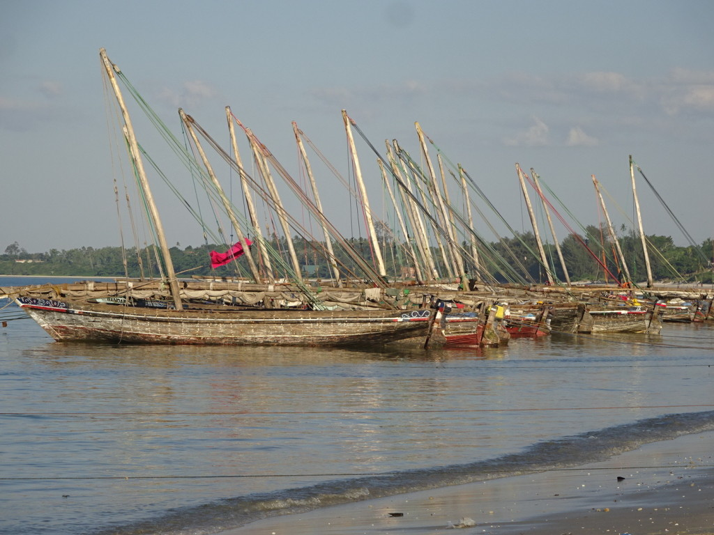 Boats in Bagamoyo. I love how they are lined up.