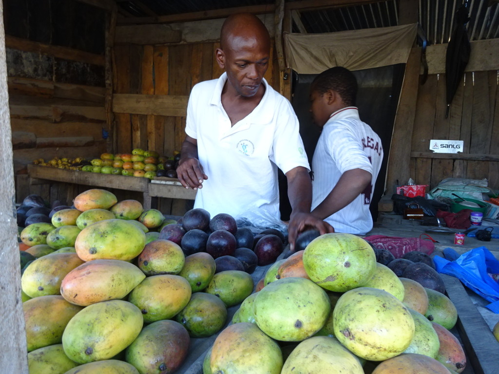 David shopping for mangos...if we were in Tanga we'd get them from the trees behind his house.