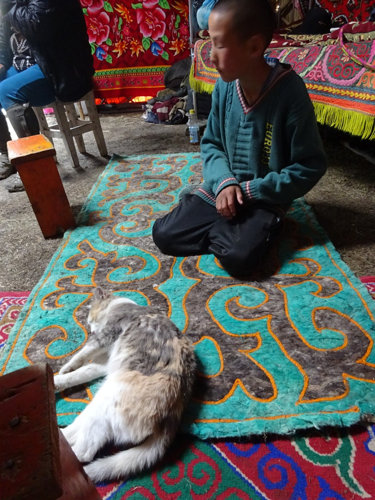 Play with your mouser-cat. (check out the beautiful mat he's sitting on - love it!)