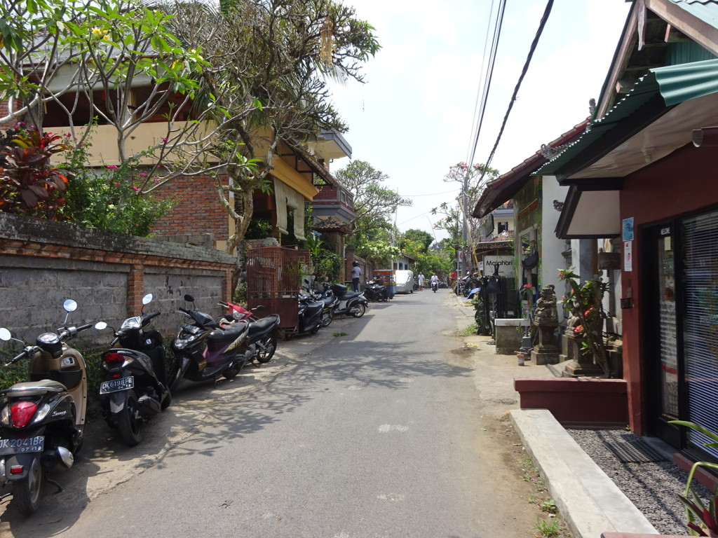 Side street in Ubud. Charming, eh? We had lunch and fruit drinks at a little tiny shop here - for about $4.