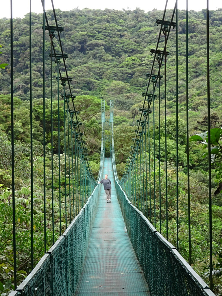 The famed cloud forest of Costa Rica.