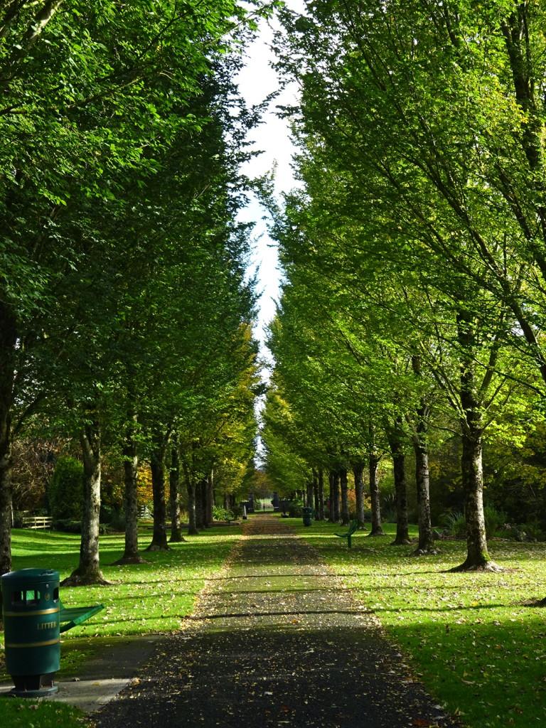 The park in Adare