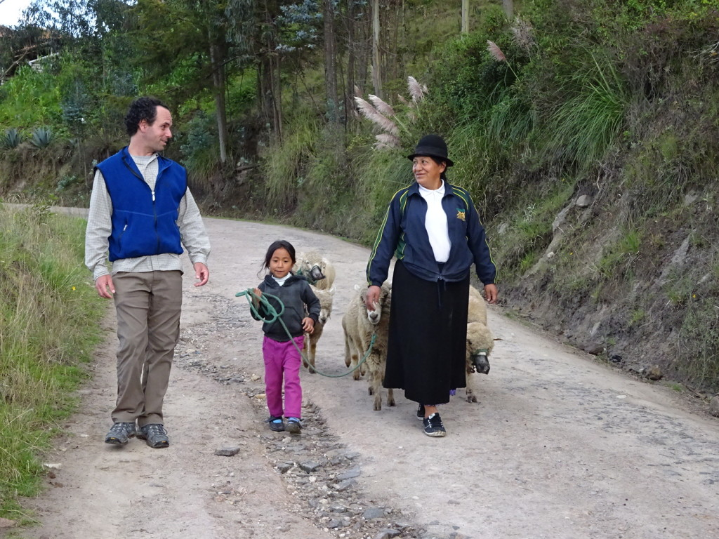 "Time to get the sheep! We ""helped"" our host mom gather the sheep during our home stay in WHERE, Peru."