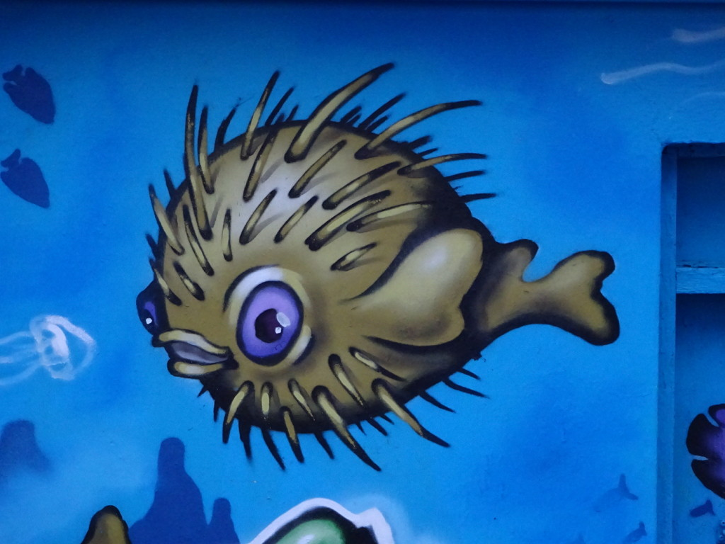 to puffer fish...