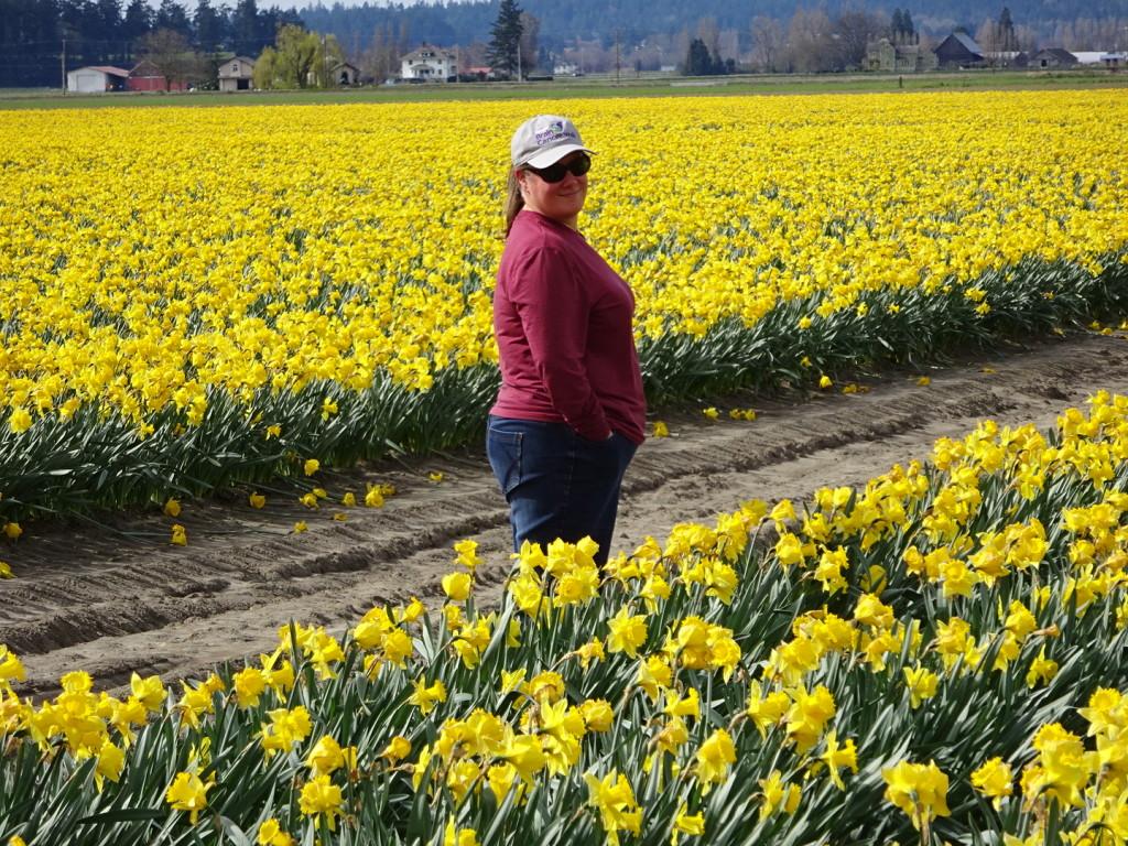 Daffodil-a-rama!
