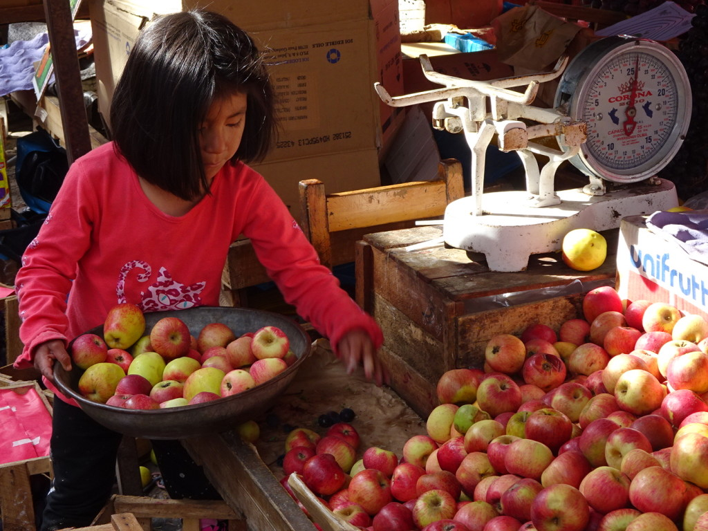 Just loved watching this little girl weigh the apples. Schools on break so hopefuly most of the kiddos go back to school in a couple of weeks.