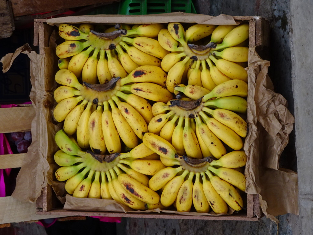 Yes we have bananas today!