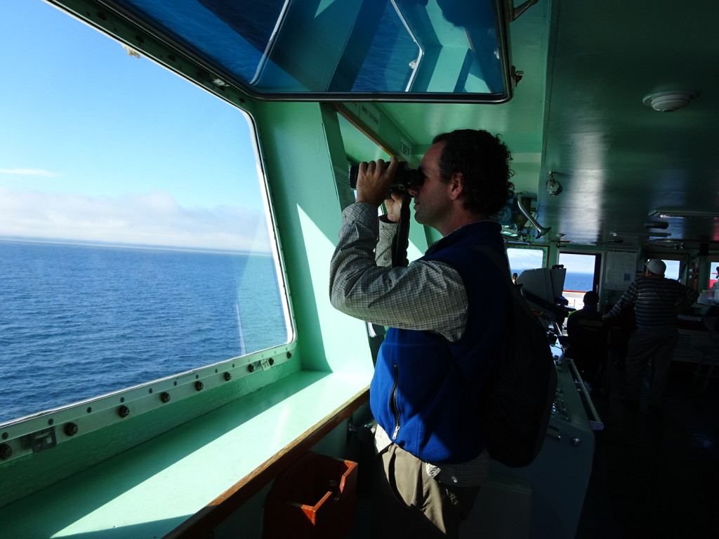 Aaron looking for ice bergs.