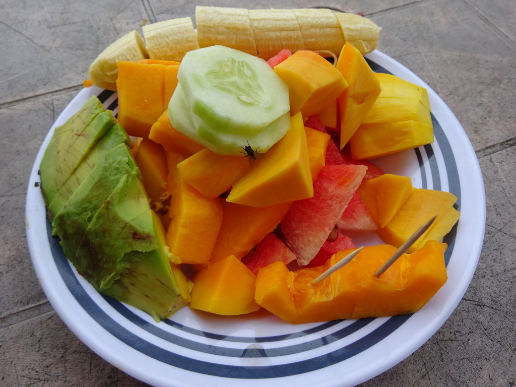 Most days we would mae our way to the shack to get a plate of veggies and fruits fro about $0.70. Flys are free.