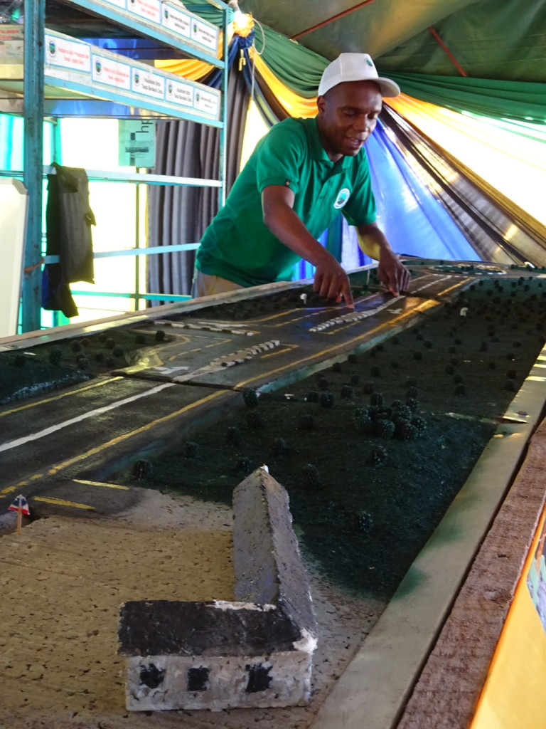 Roads! This is the DOT tent at the Environmental Fair.  See their model of the new paved road that will run from Mabasa Kenya to Dar?