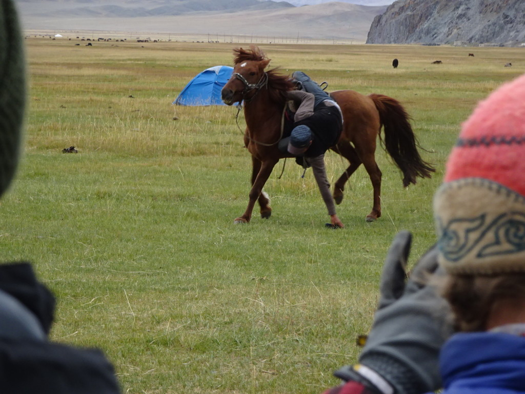 Yes, that is one of our wranglers, Erlan, reaching down from his saddle to pick up a whip lying on the ground! Amazing!